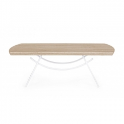 Helen Gap Coffee Table 110X60